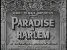 Thumbnail PARADISE IN HARLEM